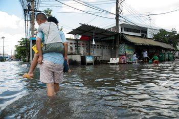 potvyniai